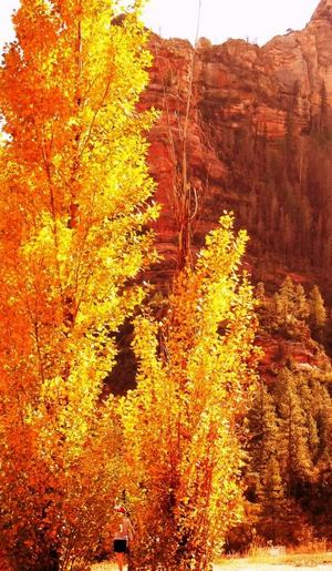 Sedona homes and fall preparations