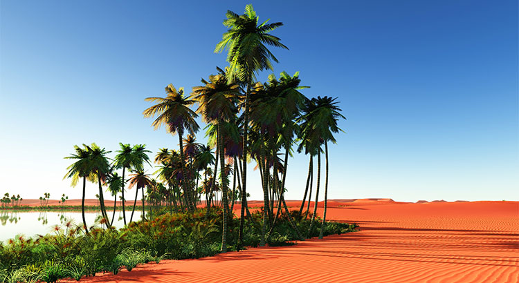 Sellers: Your Home is an Oasis in an Inventory Desert   Simplifying The Market